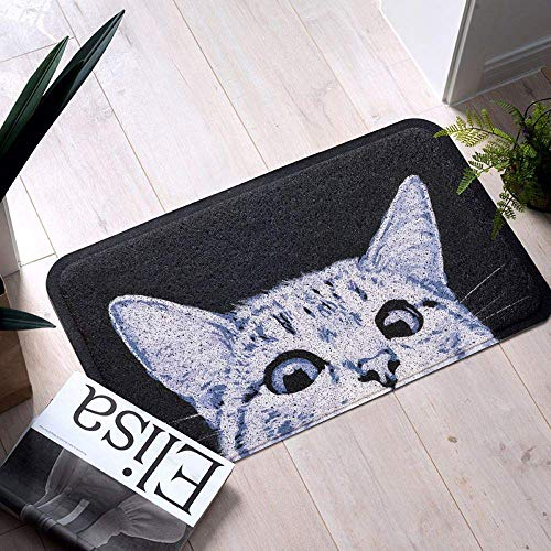 MR FANTASY Cat Front Door Mat Dirt Trapper, Welcome Mat Entrance Door Mat Rug Duraloop Mesh, Outside Patio/Inside Entry Way, Anti-Slip Bath Rug, Anti-Fatigue Kitchen Mat, Durable & Washable, 18x30 ()