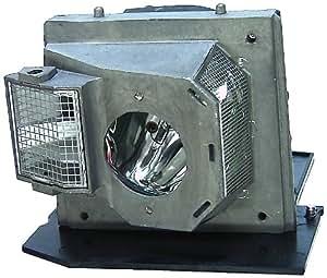 Amazon Com 300w Repl Lamp For Bl Fs300b Fits Optoma Theme