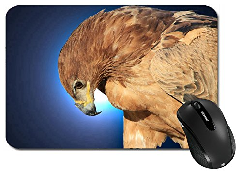 MSD Large Mouse Pad XL Extended Non-Slip Rubber Extra Large Desk Mat IMAGE 28424228 Tawny Eagle Wildlife Background from Africa Bow of Blue Beauty (Tawny Eagle)