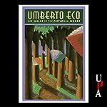 Six Walks in the Fictional Woods | Umberto Eco