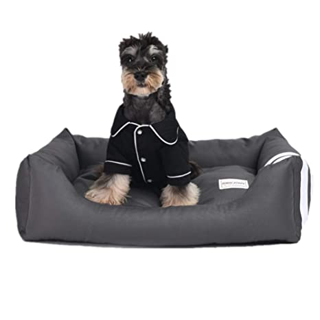 Amazon.com: ZPEM - Cama ortopédica para perro, sofá ...