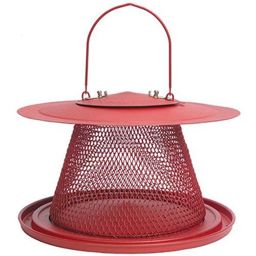 No/No Red Cardinal C00322