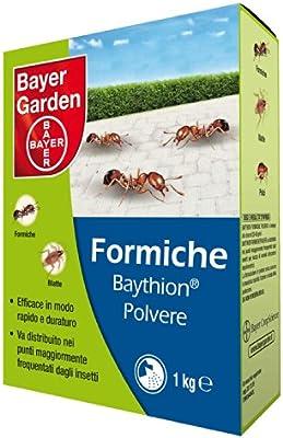 Bayer - Insecticida Baythion en polvo, para hormigas, 1 kg: Amazon.es: Jardín