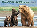 2019 Alaska Wildlife and Wilderness (Northern Light)