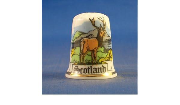 China de porcelana Birchcroft Coleccionable de dedal Escocia Highland ciervo