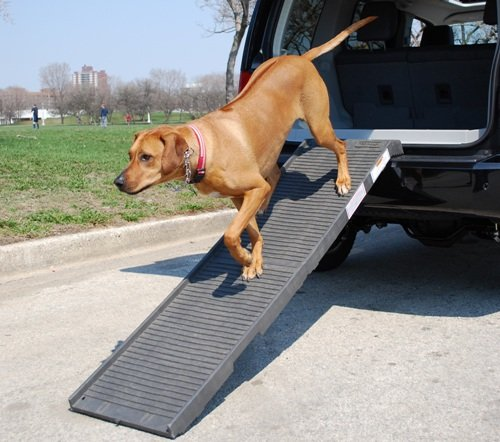 PetSTEP Folding Pet Ramp