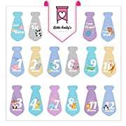 Nautical Baby Monthly Stickers - Great Shower Gift or Scrapbook Photo Keepsake