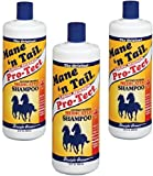 (3 Pack) Mane N Tail Pro-Tect Medicated Shampoo For Horse 32-Ounce Bottles