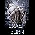 Crash And Burn (Cyborg Sizzle Book 3)
