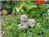 Fairy Garden Puppy Waggs