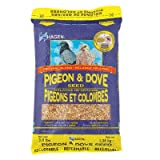 Hagen Pigeon and Dove Staple VME Seed, 25-Pound