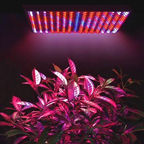 225LED Grow Light Lamp Full Spectrum Blue Red Orange White Quad-band Plant - Targets Stores Me Near