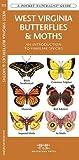 West Virginia Butterflies & Moths: A Folding Pocket Guide to Familiar Species (A Pocket Naturalist Guide)
