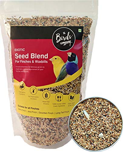 The Birds Company Exotic Seed Blend of 8 Grains, Fortified with Spirulina & Cuttlefish Bone, Bird Food for Finches…