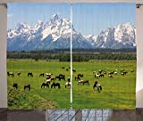 green living room ideas  Horse Decor Curtains, Grand Teton National Park Snowy Mountains Fresh Greenery Trees Animals, Living Room Bedroom Window Drapes 2 Panel Set, 108 W X 63 L Inches, Green Light Blue