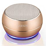 [Miniature subwoofer] Portable Bluetooth Wireless Speakers UDISON Radio Mini Phone Speakers Built-in DSP HD Mic Handsfree Outdoor 3D Stereo Speakers Support 3.5 mm Pin/TF Card /USB Charging -Gold