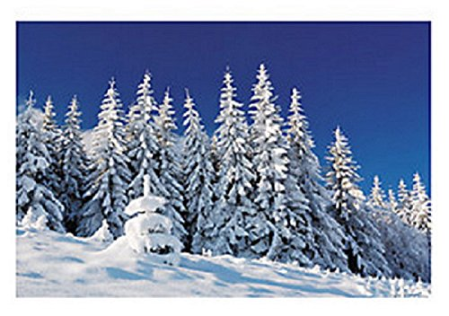 Plastic Winter Scene Backdrop (Winter Scene Backdrops)