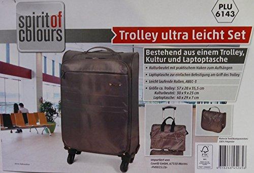 Reiseset (Trolley, Laptoptasche, Kulturbeutel)
