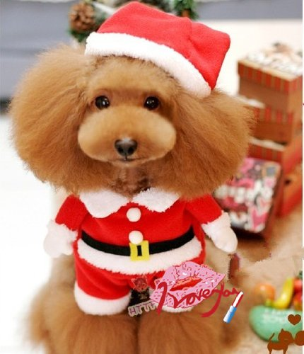 Soft Lovely Dog Cat Funny Shape Christmas Costume--large (Funny Goodwill Costumes)