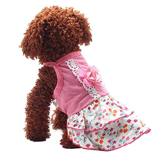 Product image of Binmer(TM)Pet Dog Clothes Puppy Flower Skirts Dress Crystal Bowknot Lace Floral Pet Princess Clothes (L)