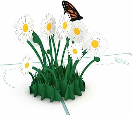 Lovepop Daisy Patch Pop Up Card, 3D Card, Mother's Day Card, Springtime Card, Birthday Card