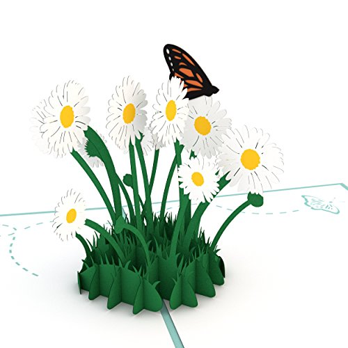 Lovepop Daisy Patch Pop Up Card, 3D Card, Greeting Card, Mother