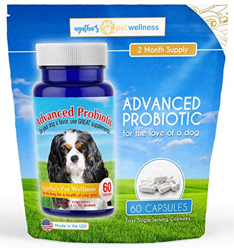 Agathas Advanced Probiotics for Dogs - 2 Month Supply ? 15 Billion CFUs, 10 Strains ? Improves Digestion, Reduces Diarrhea & IBS, Supports Immune System, Reduces Allergies, Yeast, & Dental Issues