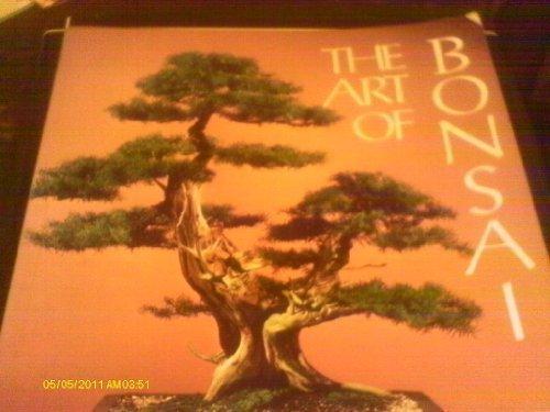 Art Bonsai Trees - The Art of Bonsai