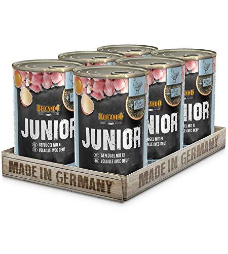 Belcando Super Premium Dose [6x400g Junior Geflügel & Ei] | Nassfutter für Hunde | Feuchtfutter Dose | Alleinfutter für…