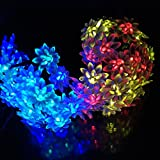 Solar Christmas Fairy String Lights 16.4ft 4.8M 20Leds Led Double Lotus Flower Lights for Outdoor Garden Patio(Multi color)