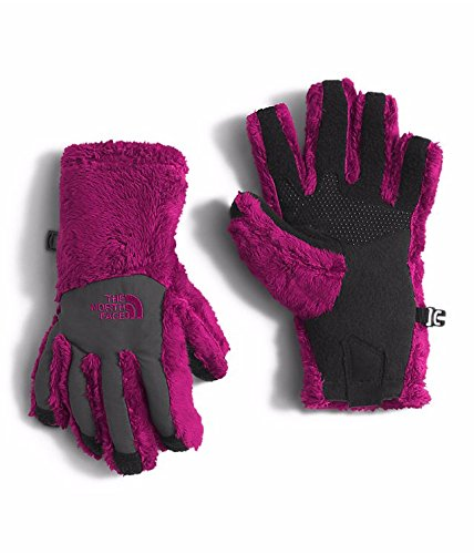 The North Face Girls Denali Etip Gloves (Sizes S - L) - roxbury pink, m (Roxbury Accessories)