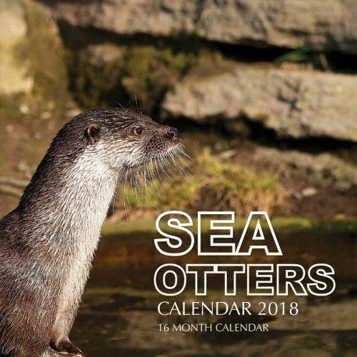 Sea Otters Calendar 2018: 16 Month Calendar