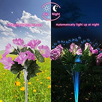 2 Pack Dapai LED Decorative Solar Flowers Stake Lights