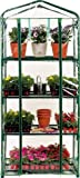 """Z ZTDM 27""""L x 19""""W x 63″H Outdoor Portable Mini Greehouse with Peaked Roof,4 Tier Garden Nursery Grow Protective Shed Hobby Green House"""