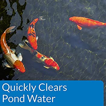 Api Pond Accu-clear Pond Water Clarifier 32-ounce Bottle 2