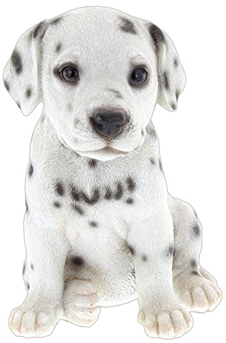 Border Concepts Nature's Gallery Pet Pals (Dalmatian Puppy) ()