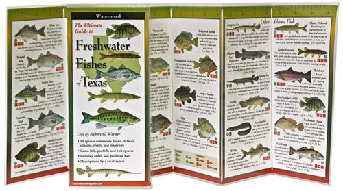 Freshwater Fishes of Texas: Folding Guide (Foldingguides) Texas Fish