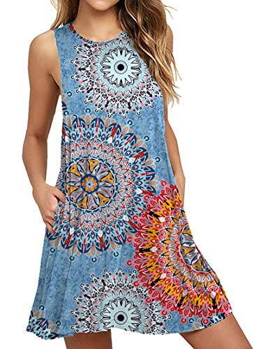 (HAOMEILI Women's Floral Print Casual Swing T-Shirt Dresses with Pockets XL Mix Blue)