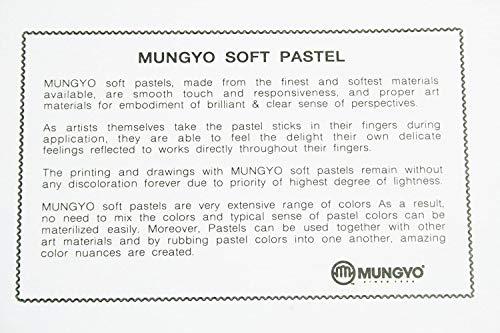 Mungyo Soft Pastel 64 Color Set Square Chalk (US English Version)