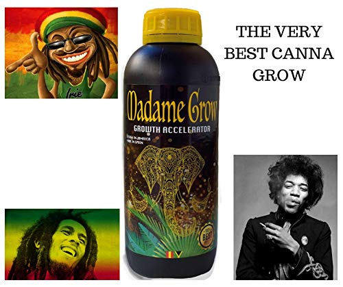MADAME GROW ⭐️⭐️⭐️⭐️⭐️ Marijuana or Cannabis nutrients Booster Growth Accelerator 250 ml  SUPERCONCENTRATED Natural Fertilizer ☘️ Root and Plant Growth 4️⃣2️⃣0️⃣ Improve Yield and get More Harvest