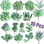 FEPITO-16-Pcs-Random-Size-Artificial-Succulent-Plants-Unpotted-Succulents-Picks-Faux-Succulent-Plant-in-Green-Stems-for-Home-Indoor-Garden-Decoration