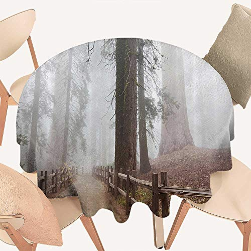 Dragonhome Round Tablecloths Evergreen Forest and Walkway in Sequoia Natial Park Foggy Morning Nature or Everyday Dinner, Parties, 47 INCH Round