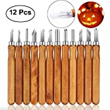 12 Pcs Wood Carving Tools Knife Kit Sculpting Knives Set Carbon Steel Professional for Beginners Rubber, Small Pumpkin, Soap, Vegetables with Reusable Pouch