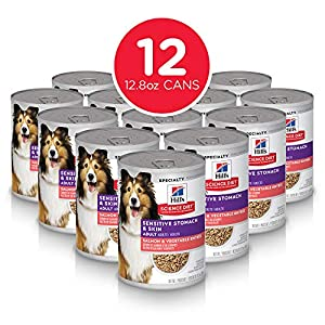Hill's Science Diet Wet Dog Food, Adult, Sensitive Stomach & Skin, Salmon & Vegetable Recipe, 12.8 oz, 12-pack 78