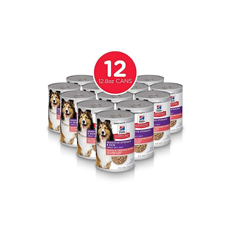dog supplies online hill's science diet wet dog food, adult, sensitive stomach & skin, salmon & vegetable recipe, 12.8 oz, 12-pack