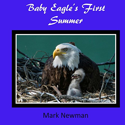 Egg Babies Bald Eagle - Baby Eagle's First Summer