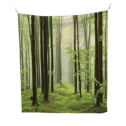 (Landscapecool tapestryBeech Forest Morning Haze in The Mountains of The Southern Polish Image 57W x 74L inch Tapestry for wallWhite Green Brown)