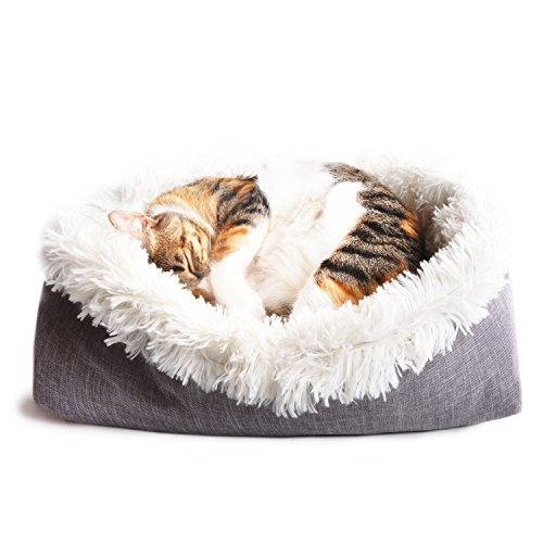 4CLAWS Furry Pet Bed/Mat (Convertible) • PURRfect Purchase