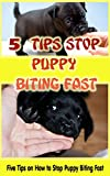 5 Tips Stop Puppy Biting Fast: Tips on How to Stop Puppy Biting Fast