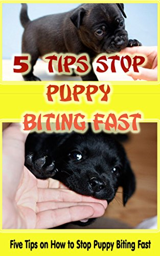 5 Tips Stop Puppy Biting Fast: Tips on How to Stop Puppy Biting Fast ()